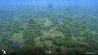 Fox3D Subnautica Grassy Landscape Concept