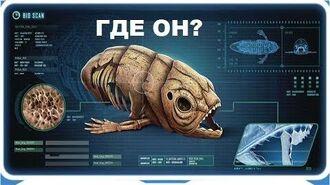 Subnautica Below Zero. Где найти мёртвого левиафана?