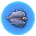 Blasenfisch inventar