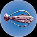 Cured Hoopfish