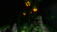 SchlingpflanzenNacht