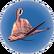 Garryfish asséché