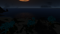 BeachAtNight