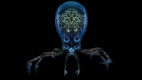 Crabsquid Front View