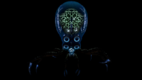 Crabsquid Front Bioluminescence