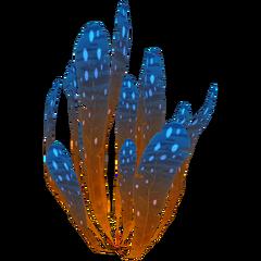 Пятнолистник Флора