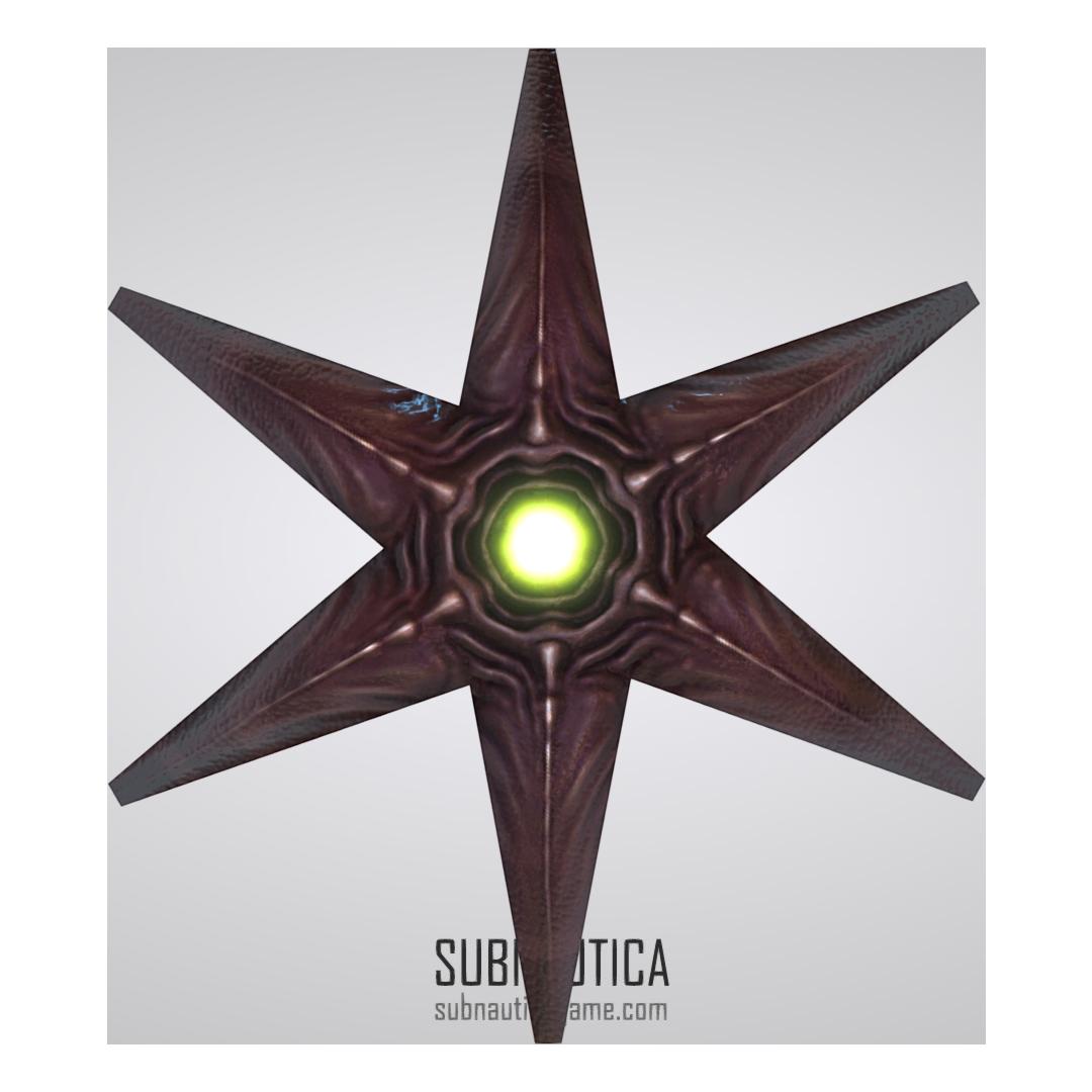 Starfish Single