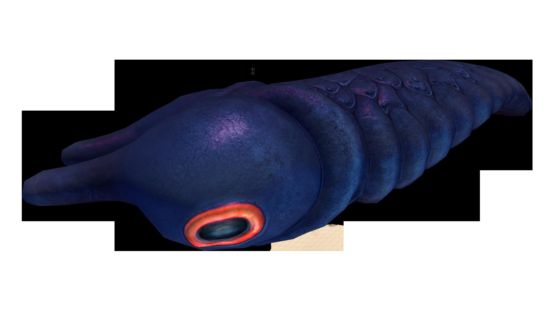 Lava Larva Fauna