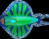 Discus Fauna