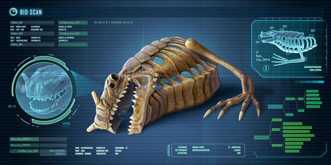 Fox3d-entertainment-seadragonskeleton