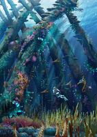 Pat-presley-coralreefzone-thecathedralgrove-lorez