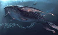 Whale Contact Concept Art