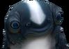 Cuddlefish triste