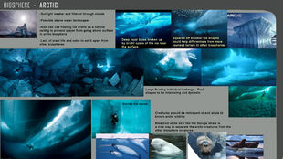'''Arctic Biome''' reference sheet