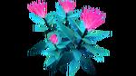 Pink Flower Flora