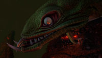 Lava Lizard Face Closeup