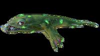 Infected Lava Lizard