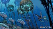 Большой Риф-Grand Reef(175 -190)