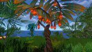 Hanging Fruit Tree (1)