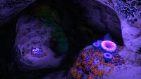 Safe Shallows Caves4