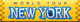 New York 2015 Logo