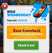 Rose Comeback