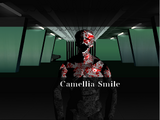 Camellia Smile