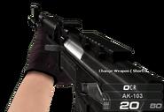 AK-103 IG