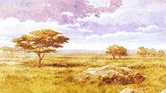 Terana Plains