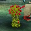 Thorn Mushroom