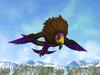 Rock Bird