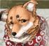 S3 Koichi Portrait