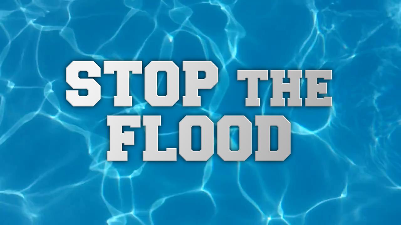 https://vignette.wikia.nocookie.net/suitman-reality/images/d/dc/Stop_the_Flood.png/revision/latest?cb=20160910212537