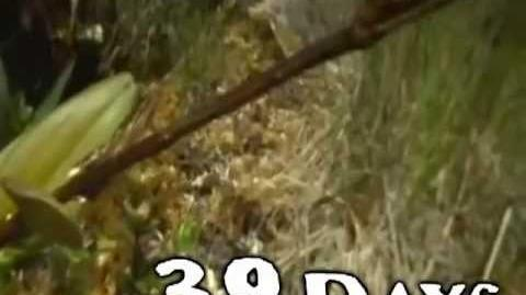 Thumbnail for version as of 20:22, July 18, 2013