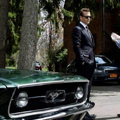 O Mustang de Harvey.