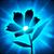 Herne Flower Growing