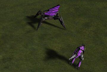 Mantis and Hunter