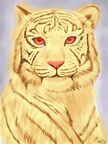 Chelsea Tiger Form