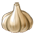 Garlic p