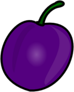 Grape Body