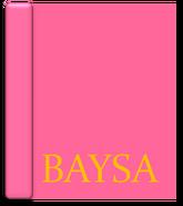 Baysa Body