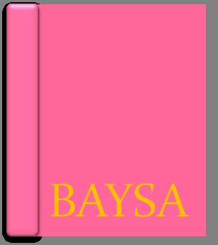 File:Baysa Body.png