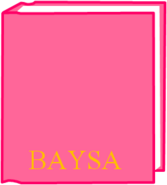 BaysaNewer