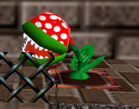 Small Piranha Plant bite