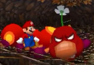 Wiggler angry SM64 DS