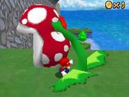 Mario pluck Piranha Plant DS