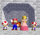 Super Mario 64 Official Wikia