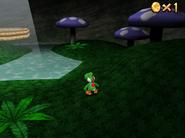 Large Leaf Forest (DS)