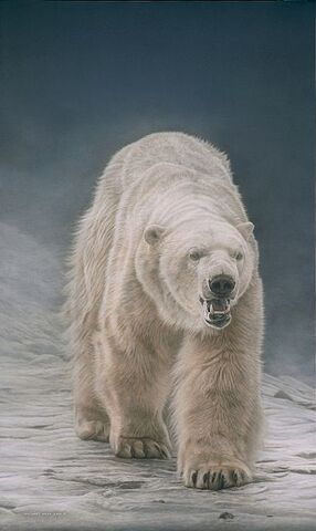 File:White Bear.jpg