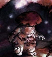 Mushroom kMen